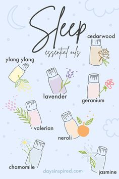 Valerian Essential Oil, Essential Oils Guide, Essential Oils For Sleep, Geranium Essential Oil, Essential Oil Scents, Bedtime Routine, Night Routine, Sleep Rituals, Inhalation