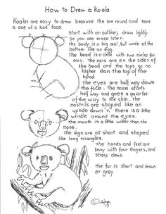 How to Draw a Koala Worksheet. Notes at the blog. http://drawinglessonsfortheyoungartist.blogspot.com/2013/02/how-to-draw-koala-worksheet.html#
