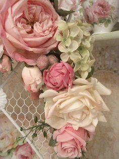 rose flowers 056 | Flickr: partage de photos!