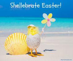 Beach Saying: Shellebrate Easter!