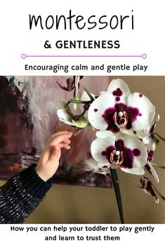 Montessori and gentle play, how to create a calm home