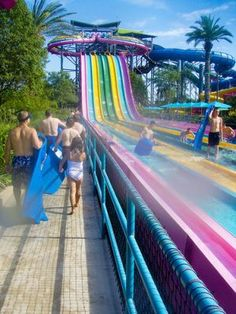 Aquatica Water Park - Sliders race down the slides.  It's as fun as it looks.