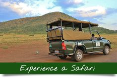 5-day-pilanesberg-safari