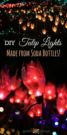 These tulip lights are a gorgeous way to use up recycling! Weihnachten These tulip lights are a gorgeous way to use up recycling! Solar Light Crafts, Diy Solar, Solar Lights, Outdoor Garden Lighting, Landscape Lighting, Outdoor Gardens, Outdoor Projects, Garden Projects, Diy Projects