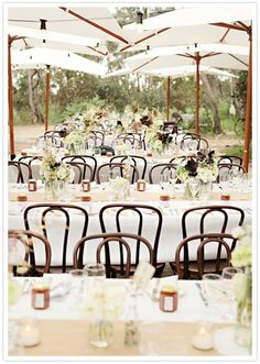 outdoor reception with bentwood chairs