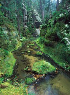 Czech Republic, Prague, The Good Place, River, Places, Nature, Characters, Outdoor, Photos
