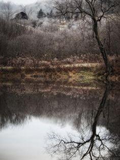 Atmospheric inspiration: frosty scenery #DearTopshop