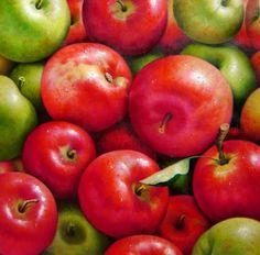 Bodegón moderno, manzanas al óleo, 99 x 99 cm | Cuadros Modernos al Óleo