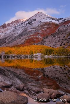 Autumn color and first snow at North Lake in the Eastern Sierra.  Bishop, California, USA.