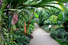 Matthei Botanical Gardens, University of Michigan