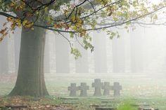 Het Deutscher Soldatenfriedhof Hooglede is een militaire begraafplaats in de Belgische gemeente Hooglede. De begraafplaats ligt in het oosten van het dorpscentrum Er rusten 8.241 gesneuvelde Duitse soldaten uit de Eerste Wereldoorlog. Het is één van de vier grote Duitse begraafplaatsen in België, de andere liggen in Vladslo, Menen en Langemark. (foto: Erfgoed - Stad-Land-schap t West-Vlaamse hart)