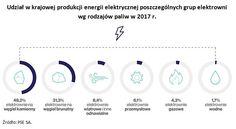 """Raport """"Rozwój sektora odnawialnych źródeł energii"""", NIK, Warszawa 2018"""
