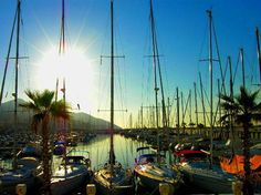 Port D'Aiguadolc - Offering Something a Little Different