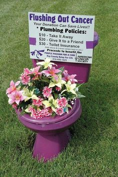 """relay for life fundraising purple toilets. Like """"Flamingo-ing"""" someone, but a lot less set up! A fantastic Idea to raise some money for your team, and draw some attention to our cause!"""