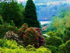A view to the see at Trebah Gardens in Cornwall