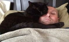 Spent Most of His Life as a Stray Cat Until He Found this Man