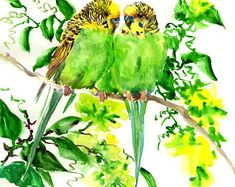 Budgies, parakeets, bird painting, bird art, watercolor birds, yellow green, pets birds, love wall art, two birds, budgie, budgies painting Love Wall Art, Two Birds, Parakeets, Watercolor Bird, Bird Art, Etsy Seller, The Originals, Yellow, Pets