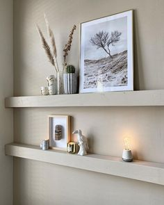 Humble Lights (@humble.lights) • Instagram photos and videos Floating Shelves, Lights, Photo And Video, Videos, Photos, Instagram, Home Decor, Pictures, Decoration Home