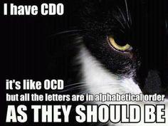 OCD cat is CDO