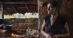 osCurve Brasil : No Tocantins, há fome enquanto número de milionári...