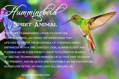 Need a little lightness in your life? Maybe it's time to call upon the small but mighty Hummingbird. If you've seen this playful creature recently, he might just have a message for you. Butterfly Spirit Animal, Spirit Animal Totem, Animal Spirit Guides, Animal Totems, Hummingbird Quotes, Hummingbird Symbolism, Hummingbird Garden, Hummingbird Tattoo, Animal Meanings