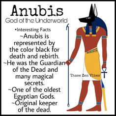 Anubis, Egyptian God of the Underworld and guardian of the dead