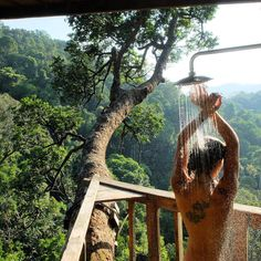 """Gibbon Experience, Laos (@nicoleguillon) on Instagram: """"treehouse shower with a jungle view #laos #gibbonexperience #treehouse"""""""