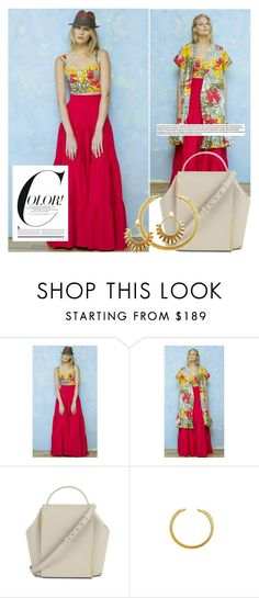 """""""Color!"""" by runway2street ❤ liked on Polyvore featuring Sandra Weil and VANINA"""