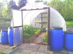 A Year Of Growing In A Polytunnel – My Review