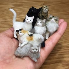 needle felted cat Awww Miniatures: Adorable Pets by Tomoko Masakage: , , . Needle Felted Cat, Needle Felted Animals, Felt Animals, Cute Baby Animals, Needle Felting Tutorials, Felt Cat, Miniature Crafts, Wet Felting, Felt Toys