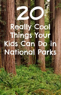 Things Your Kids Can