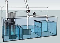 Saltwater Aquarium Setup, Aquarium Sump, Cichlid Aquarium, Coral Reef Aquarium, Aquarium Stand, Tropical Fish Aquarium, Nano Aquarium, Diy Aquarium, Aquarium Filter