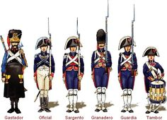 spanish walloon guard 1808