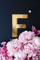 Flower Alphabet F by neon* fotografie as Poster in Standard Frame Flower Alphabet, Alphabet Print, Photo Deco, Neon, Image Notes, Typography Poster, Fine Art, Pure Products, Christian Wallpaper
