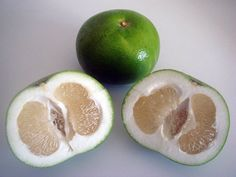 """""""Oroblanco""""....This strange-looking fruit is a cross between an acid-less pomelo and a white grapefruit. Less bitter than a grapefruit, the fruit is mild and sweet with fewer seeds. Produced by the University of California breeding program in 1958 the Oroblanco was released in the US in 1980."""