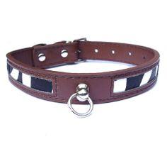 Wild safari Zebra print dog collar, choc brown dog collar, unusual design.