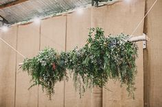 Sarah + Josh   Photography by Katie Hillary   Styling by Feast Of Love Feast Of Love, Wedding Events, Wedding Ideas, Wreaths, Plants, Photography, Style, Swag, Photograph