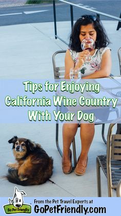 Tips for Enjoying California's Wine Country with Your Dog   GoPetFriendly.com. Photo: Paroma Chakravarty