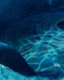 Pre izvesnog vremena na Jutjubu se pojavio gotovo neverovatan snimak .Video snimak koji prikazuje dva leteća tanjira koji se su se nalazila ovde na Zemlji odnosno pod vodom!
