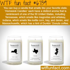 Homesick candles - WTF fun fact