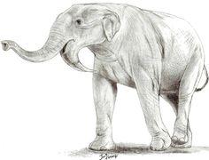 Deinotherium thraceiensis by Jagroar on DeviantArt