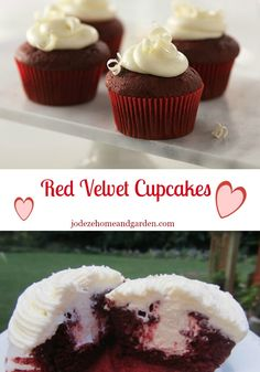 Red Velvet Cupcakes ( With Cream Cheese Frosting )