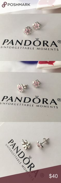 Authentic Pandora Stud Magnolia Earrings Pandora Collection 🌻 Authentic Pandora Stud Magnolia Earrings Brand new - NEVER USED Comes in its pandora dust baggy  🌻 BUNDLES ALWAYS WELCOMED! Since all produce are authentic please no Low ballers💕 Pandora Jewelry Earrings