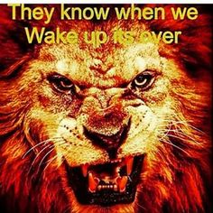 Wake up to your real heritage, you are a Israelite, not an African American, so we can get out of this hell, and get the kingdom. Tribe Of Judah, Black Hebrew Israelites, 12 Tribes Of Israel, Lion Of Judah, Black History Facts, Knowledge And Wisdom, Bible Truth, African American History, Black African American