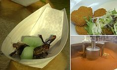 Insect-based food products creep into Belgian kitchens and cafeterias