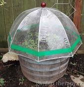 Garden Design Cheap Mini Greenhouses for Seed Starting ~Family Food Garden - Great indoor mini greenhouses! Use a mini greenhouse for seed starting or to grow small plants. An indoor greenhouse takes up less space Build A Greenhouse, Indoor Greenhouse, Greenhouse Gardening, Container Gardening, Greenhouse Ideas, Greenhouse Wedding, Cheap Greenhouse, Portable Greenhouse, Homemade Greenhouse