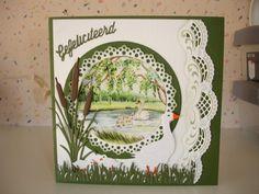 Voorbeeldkaart - gefeliciteerd - Categorie: Scrapkaarten - Hobbyjournaal uw… Bird Cards, Marianne Design, Swan Lake, Projects To Try, Card Making, Shabby, Birds, How To Make, Crafts