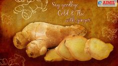 #Ginger has a long history of use for relieving #DigestiveProblems such as #Nausea, #LossOfAppetite, #MotionSickness and #pain. The root or underground stem (rhizome) of the ginger plant can be consumed fresh, powdered, dried as a spice, in oil form or as juice.