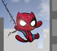 Spider Cat!