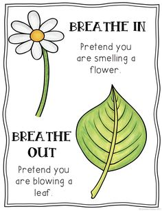 FREE Mindful Breathing Posters- Includes 3 posters to help students practice mindfulness through deep breathing.